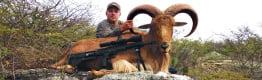 Exotic & Native Hunting