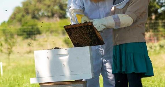 girl beekeeping in a skirt