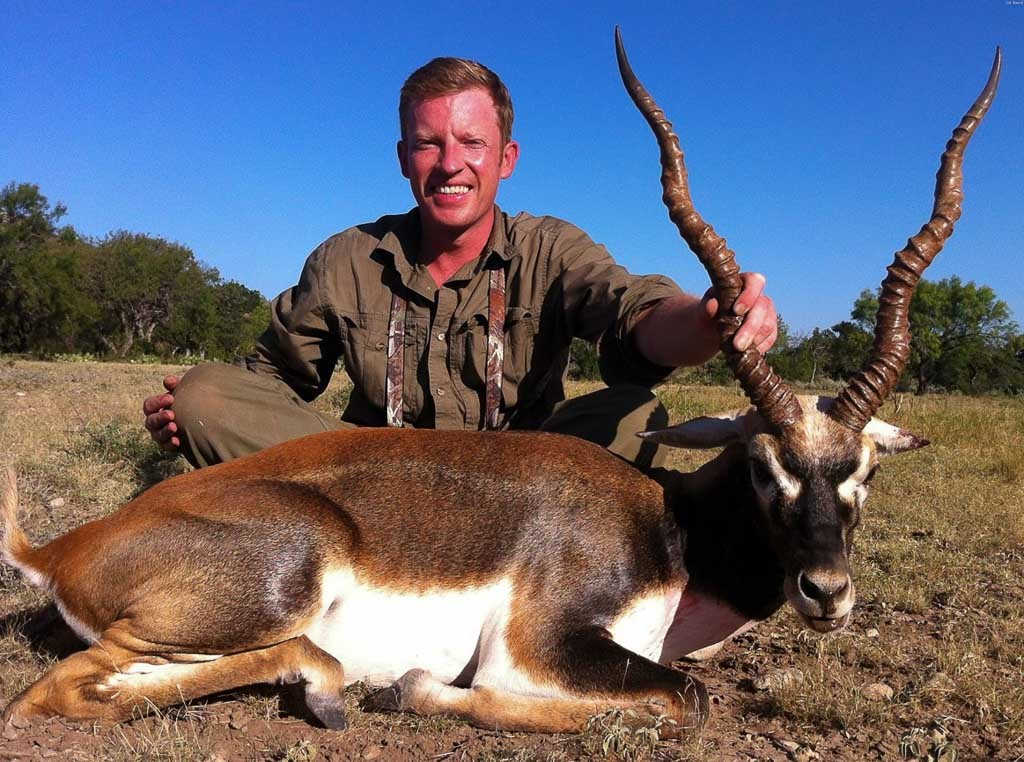 blackbuck hunting 60 species to hunt ox ranch