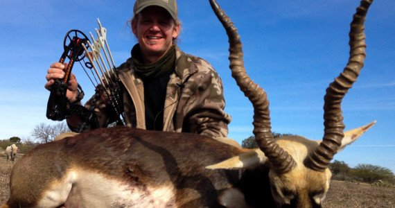 blackbuck bow hunting
