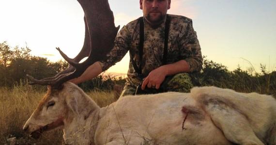 fallow hunts