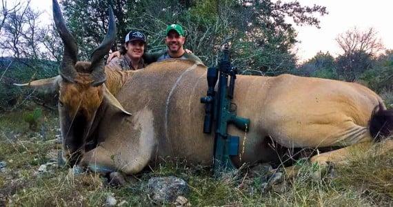 eland hunting Texas