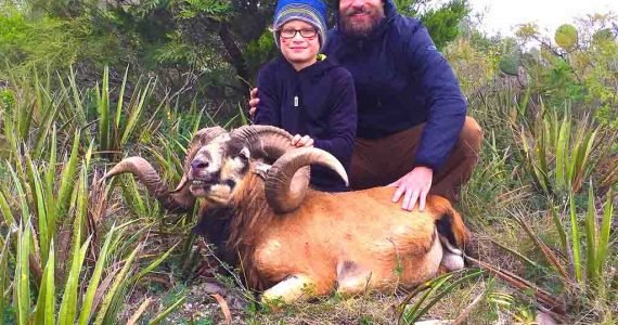 father son corsican sheep hunting