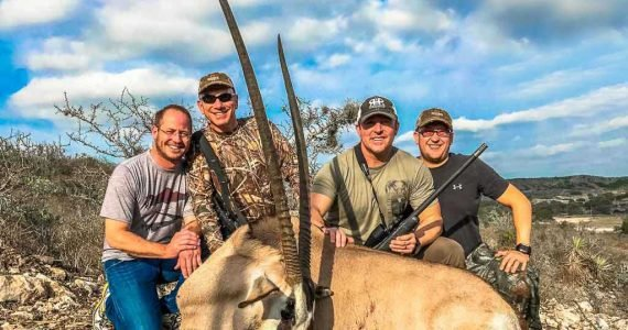 gemsbok hunting texas