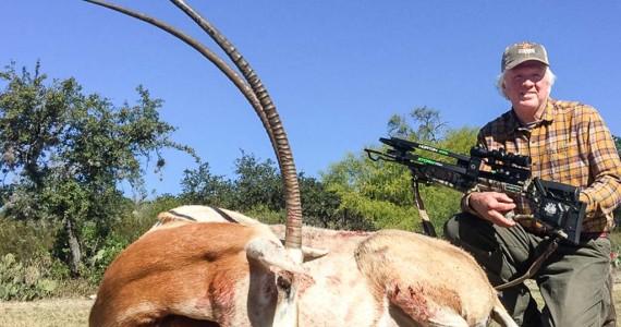 scimitar oryx trophy