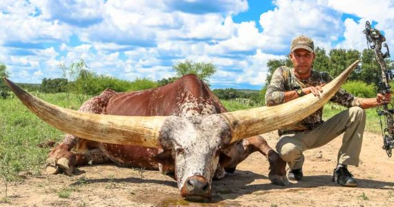 watusi hunting with bow