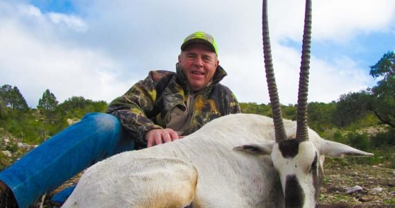 arabian antelope hunts