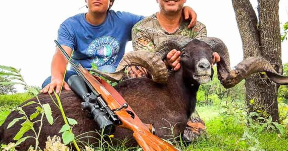 father son black hawaiian sheep hunting