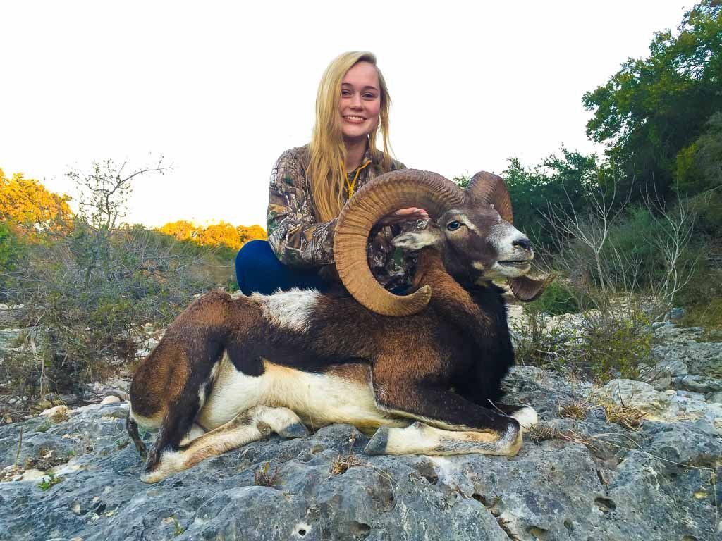 mouflon sheep hunting 18000 acres in texas 60