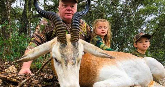 dama gazelle hunts