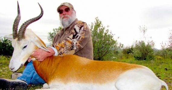 dama gazelle hunting
