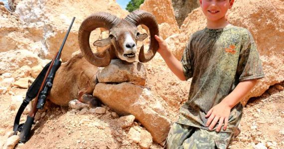 father son mouflon sheep hunts