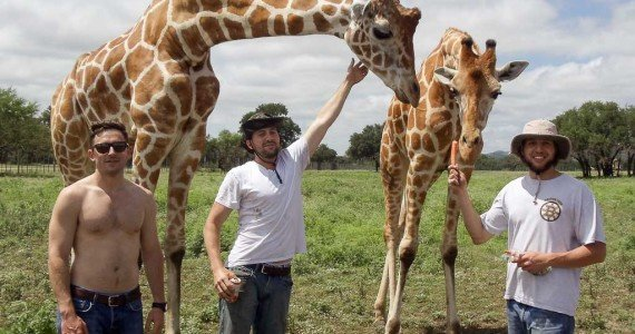 giraffe bachelor party