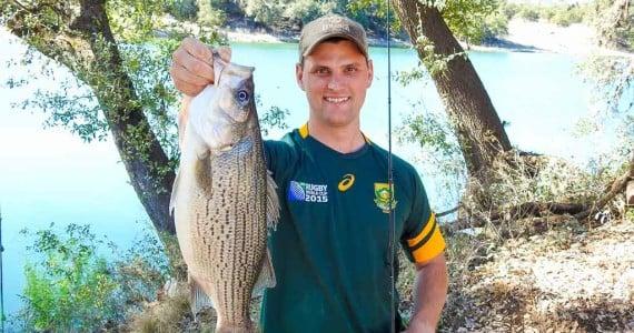 white stripped bass fishing
