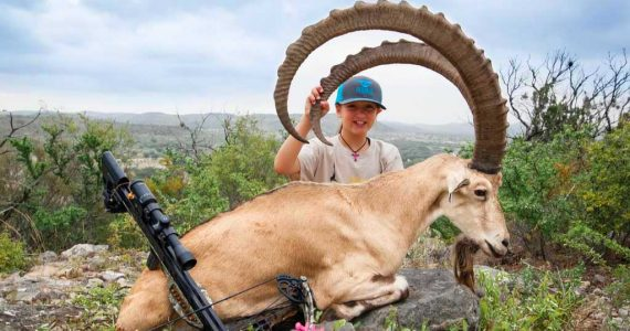 ibex crossbow hunting
