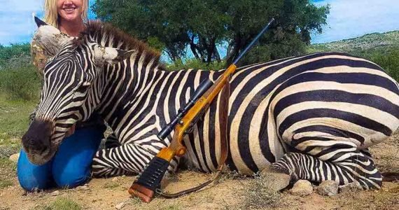 texas zebra hunts